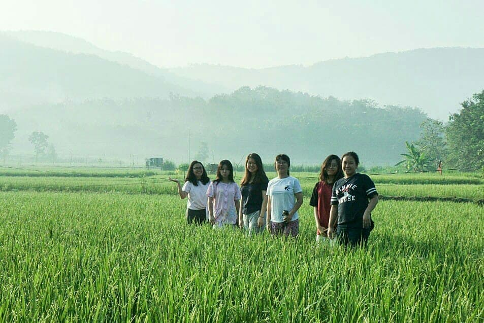 Wisata Wayang Wukirsari